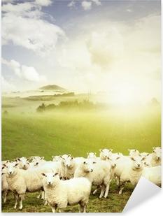 Pixerstick Sticker Sheep