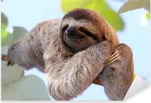 Sloth Pixerstick Sticker