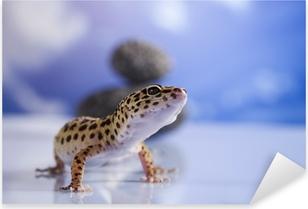Small gecko reptile lizard Pixerstick Sticker