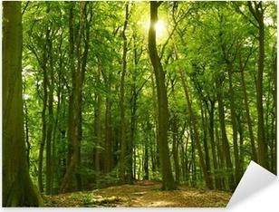 Sonniger Sommerwald Pixerstick Sticker