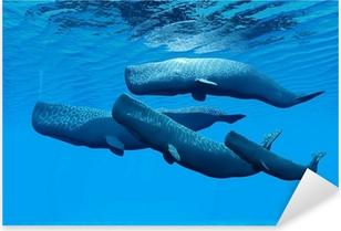 Sperm Whale Family Pixerstick Sticker