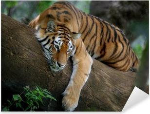 Tiger on tree Pixerstick Sticker