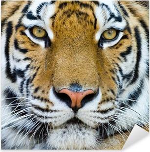 Pixerstick Sticker Tiger