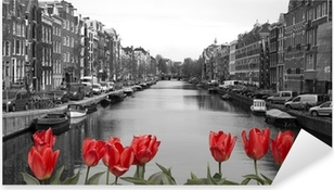 Sticker Pixerstick Tulipes rouges dans amsterdam