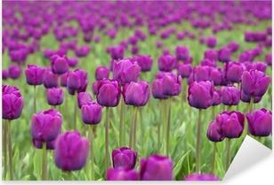 tulips Pixerstick Sticker