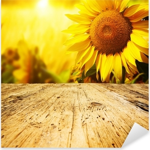 Tuscany sunflowers background Pixerstick Sticker