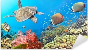 Underwater panorama Pixerstick Sticker