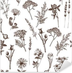 vector seamless pattern with ink hand drawn medicinal herbs sketch Pixerstick Sticker