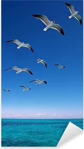 Pixerstick Sticker Verschillende meeuwen vliegen over een blauwe zee