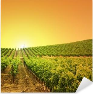 Vineyard on a hill Pixerstick Sticker