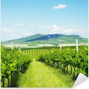 vineyards, Palava, Czech Republic Pixerstick Sticker
