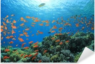 Pixerstick Sticker Vis en Coral Reef onderwater