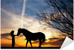 Pixerstick Sticker Vrouw en paard
