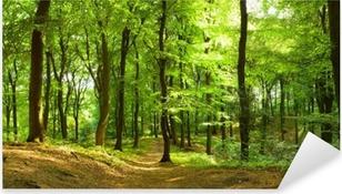Waldweg im Sommer Pixerstick Sticker