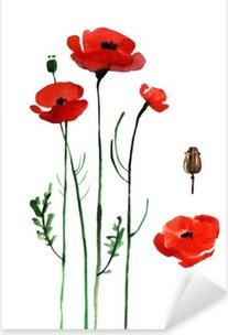 watercolor poppy, hand painted draw Pixerstick Sticker
