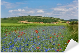 Pixerstick Sticker Weide met korenbloemen en klaprozen in Auvergne