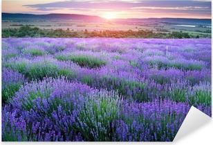 Pixerstick Sticker Weide van lavendel