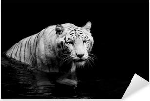 Sticker Pixerstick White tiger