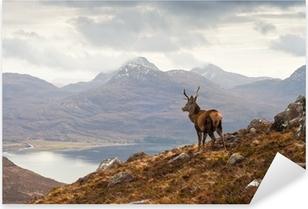 Pixerstick Sticker Wild hert, Schotse hooglanden