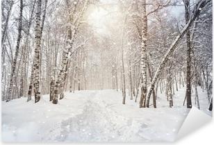Winter birchwood Pixerstick Sticker