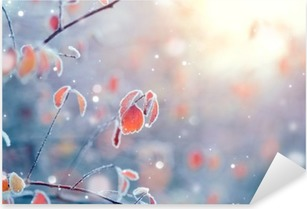 Winter nature background. Frozen branch with leaves closeup Pixerstick Sticker