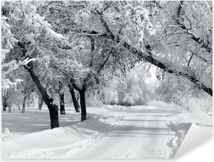 Winter park, scenery Pixerstick Sticker