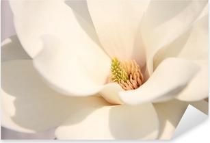 Pixerstick Sticker Witte magnolia bloemen