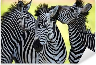 Pixerstick Sticker Zebra's zoenen en elkaar gekropen