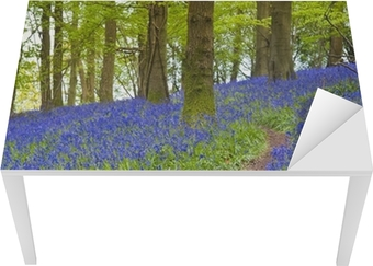 Magical forest and wild bluebell flowers Table & Desk Veneer
