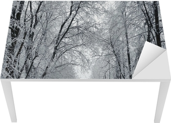 Winter park, scenery Table & Desk Veneer