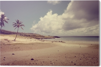 Tableau Alu-Dibond Palmiers sur la plage d'anakena, île de pâques