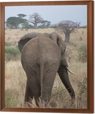 tableau en cadre lphant bum - Cadre Elephant