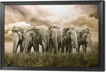 tableau en cadre elephant herd - Cadre Elephant