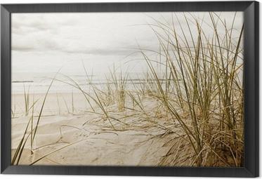 Tableau en Cadre Gros plan d'herbe haute sur une plage