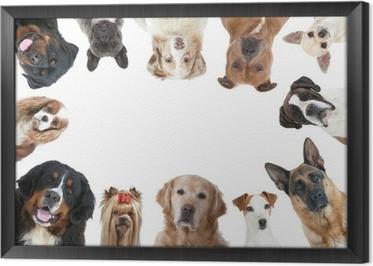 tableaux sur toile un jack russell terrier pixers nous vivons pour changer. Black Bedroom Furniture Sets. Home Design Ideas