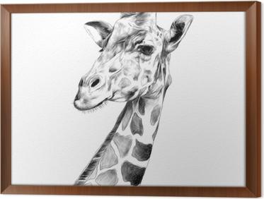 Tableau Sur Toile La Tete D Une Girafe Croquis Dessin Vectoriel