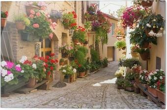 Tableau en verre Alley avec des fleurs, Spello