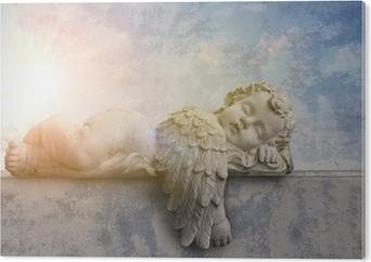 Tableau Plexiglas Ange dormir au soleil