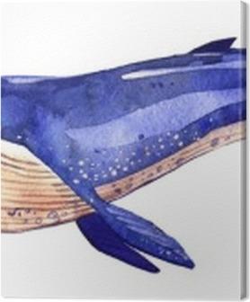 Tableaux premium Aquarelle baleine, la main illustration peinte isolé sur fond blanc