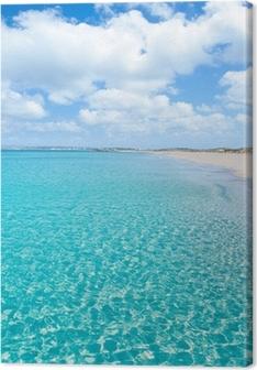 Tableaux premium Formentera Llevant tanga plage turquoise
