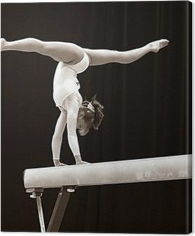 Tableaux premium Gymnaste - 2