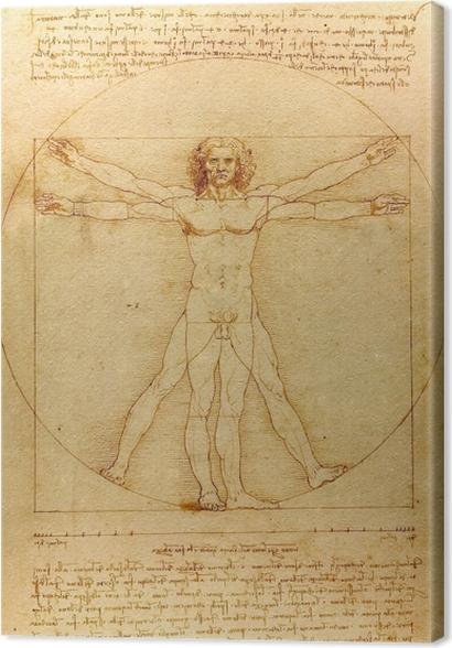 Tableaux premium Léonard de Vinci - Homme de Vitruve - Reproductions