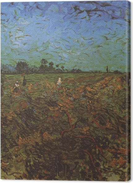 Tableaux premium Vincent van Gogh - The Green Vineyard - Reproductions