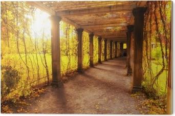 Tableau PVC Beau parc d'automne