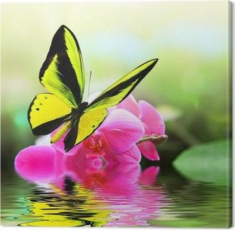 Tableau sur Toile 8 papillons