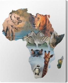 Tableau sur toile Afrique collage