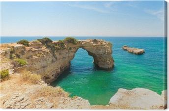 Tableau sur toile Algarve Strand - Algarve Plage