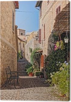 Tableau sur toile Allée avec des fleurs d'une petite ville en Ombrie, Italie