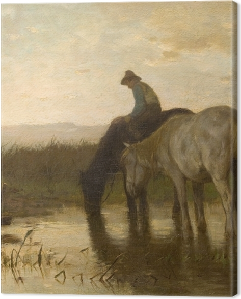 Tableau sur toile Anton Mauve - Chevaux buvant - Reproductions