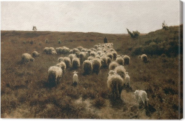 Tableau sur toile Anton Mauve - Le retour du troupeau, Laren - Reproductions